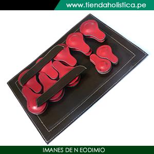 Set para Biomagnetismo y Magnetoterapia (Imanes de Neodimio)