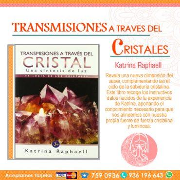 Libro: Transmisiones a Traves del...