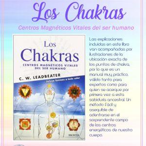 Libro Los Chakras Centros Magneticos Vitales del Ser Humano