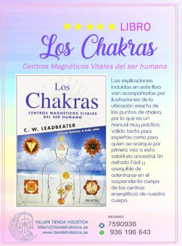 Libro Los Chakras Centros Magneticos...