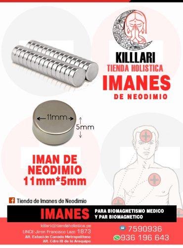 Iman de Neodimio 11mm X...