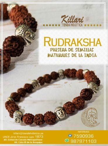 Pulsera con semilla de Rudraksha...