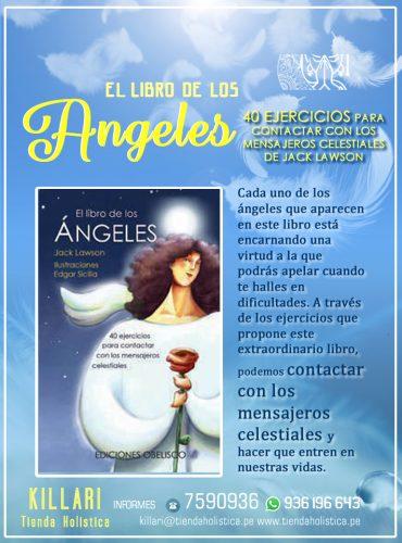 El libro de los ángeles:...