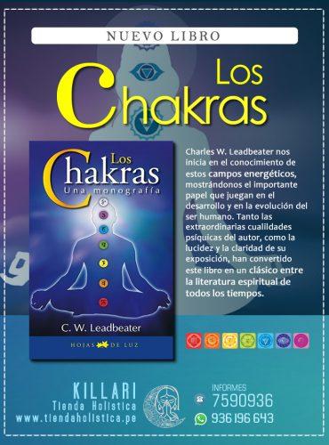 LIBRO:LOS CHAKRAS UNA MONOGRAFIA
